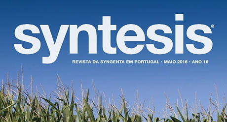Syntesis Maio 2016